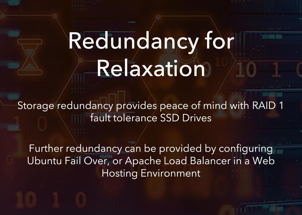 RAID1 Redundant SSD Drives