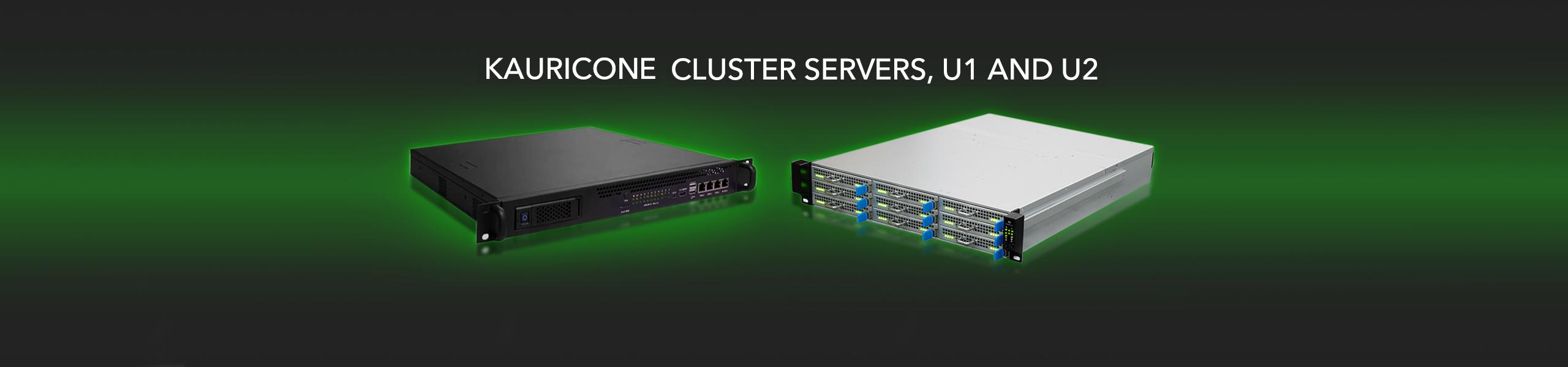 Kauricone Cluster Server U2 Order Now