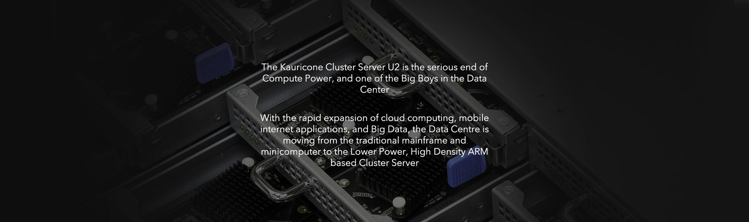 Cluster Server U2 High density ARM based Servers