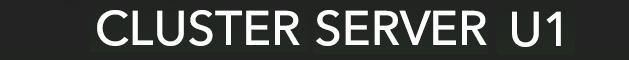 Kauricone Cluster Server U1